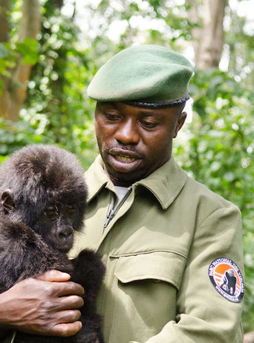 A Night for Virunga