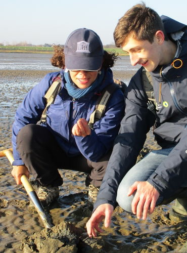 Wadden Sea holds first expert meeting to discuss marine litter at World Heritage  ...