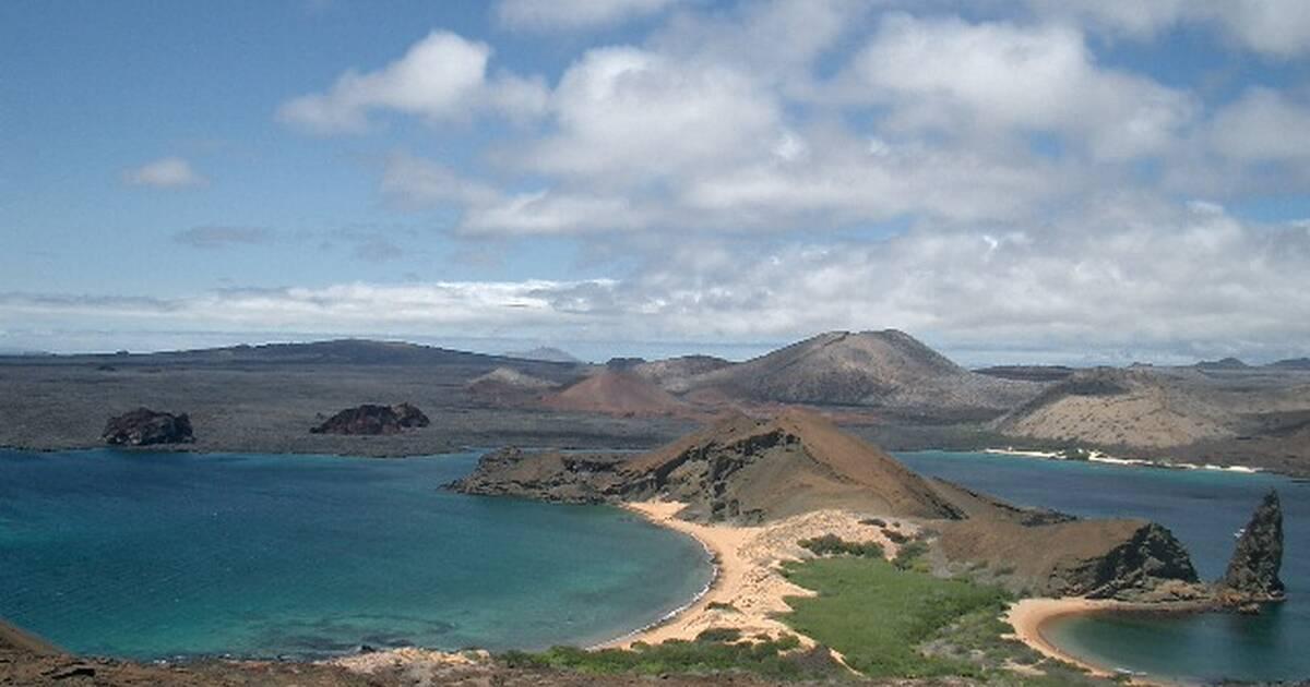 Galapagos - cover