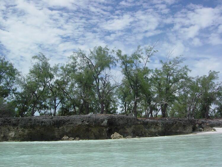 Aldabra Atoll Unesco World Heritage Centre