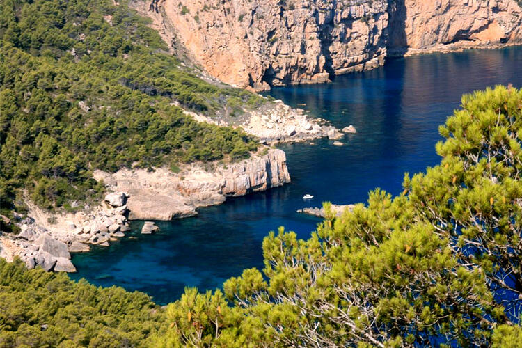 Elegant Ibiza, Biodiversity And Culture
