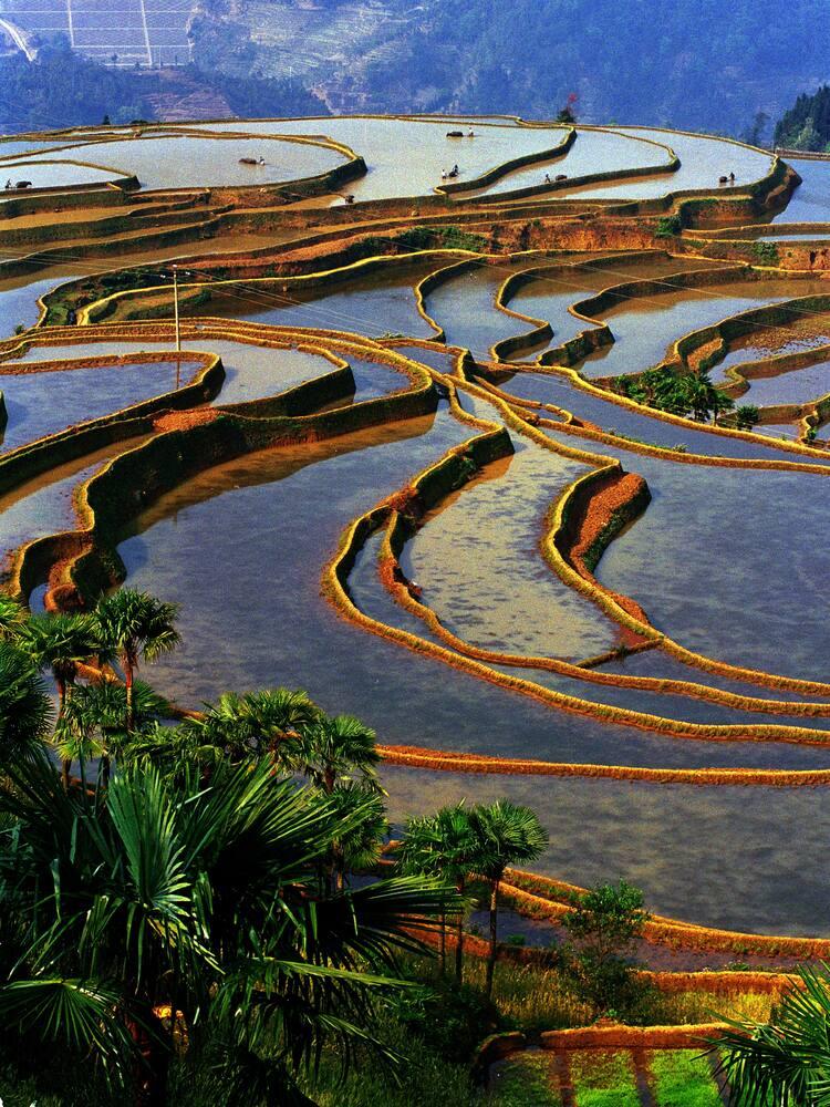 cultural landscape of honghe hani rice terraces unesco