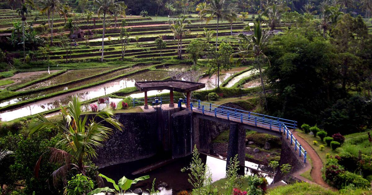 Cultural Landscape Of Bali Province The Em Subak Em